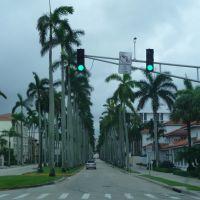 Palm Beach, Глен-Ридж