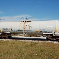 Trinity Chemical Leasing, LLC Tank Car No. 21145 at Bartow, FL, Гордонвилл