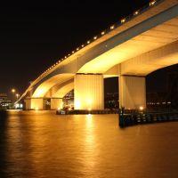 Acosta Bridge at Night, Джексонвилл