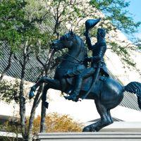 Andrew Jackson Memorial (Jacksonville), Джексонвилл