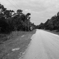 Street View, Еглин Аир Форк Бас