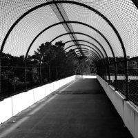 Suncoast Bikeway Bridge, Еглин Аир Форк Бас