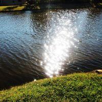pond, Индиан-Харбор-Бич