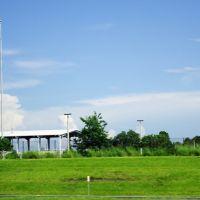 2014 07-26 Florida - along Rte 570 - Cat, Итон-Парк
