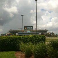 Sun Life Stadium en Miami, Карол-Сити