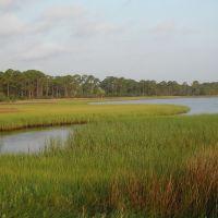Marsh Grass, Каррабелл