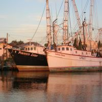 Shrimp Boats at Sunset, Каррабелл