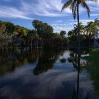 F.B.La palmera y su entorno., Ки-Бискейн