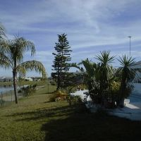 February 2005,Port Charlotte, Fla. in Chris & Donnas backyard looking southeast, Кливленд