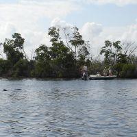 A dolphin and fishmen, Кливленд