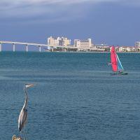 Sand Key Bridge, Cleawater Beach, Клирватер