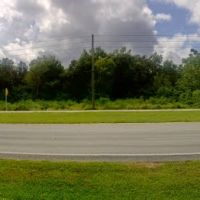 2011, Lakeland, Florida, USA -, Комби-Сеттлмент