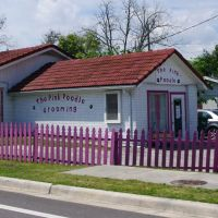 2014 04-05  Lake Alfred, Florida - The Pink Poodle, Лейк-Альфред