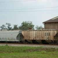 CSX Transportation Covered Hopper No. 260651 and Union Pacific Railroad Covered Hopper No. 79078 at Lake Alfred, FL, Лейк-Альфред