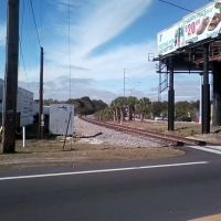 train tracks along busch blvd, Лето