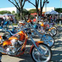 Dale Mabry  Harley Davidson Motorbikes, Лето