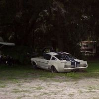 1966 Shelby GT350 in trailer park, NOT FOR SALE but it was, Brooksville Fla (2003), Лив-Оак