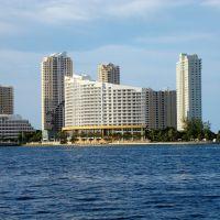 MIAMI 52, Майами