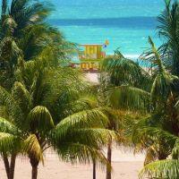The View, Майами-Бич