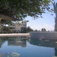 Holocaust Memorial, Майами-Бич