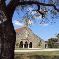 Grace Lutheran Church and tree-Curtiss Prkway, Майами-Спрингс