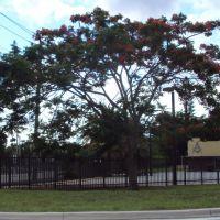 Centro Masonico-Oleeta West Dade Masonic Center Building-East Drive & S Royal Poinciana Blvd, Майами-Спрингс