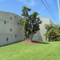 Dotted Wall &Tree, Майами-Спрингс