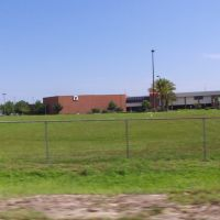 Armwood High School, Манго