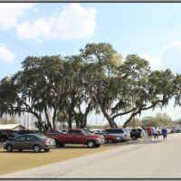 Florida State Fairground, Манго