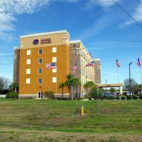 2012, Tampa, FL, USA - Comfort Suites, Манго