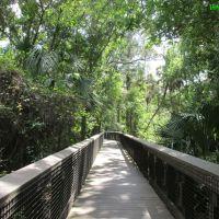 Perfect Afternoon @ Fern Forest Coconut Creek, FL USA, Маргейт