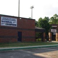 Chipola College Mens Baseball, Марианна