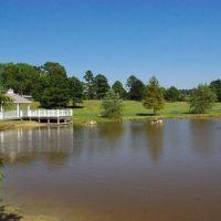 Gazebo and pond @ Citizens Lodge Park, Марианна