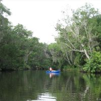 Crane Creek, Мельбурн