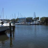Melbourne Harbor Marina, Мельбурн