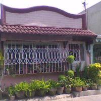 my house gene 2, Молино