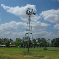 Windmill, Нома