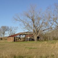 weathered barns, Underwood Crossing Fla (1-2-2012), Нома