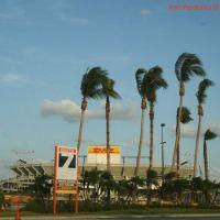 Dolphin Stadium, Miami, Florida, Норвуд