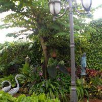 patio, Норвуд