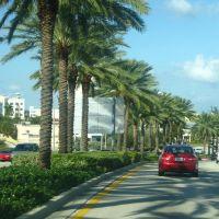 PALMS AT AVENTURA., Норт-Майами-Бич