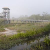 Boca Ciega County Park, Норт-Редингтон-Бич