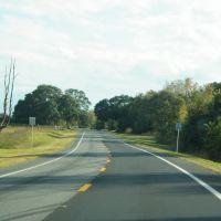 2010 Newberry, FL, USA - along SR 27, Ньюберри