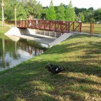 Tuscawilla Park, Ocala, Florida, Окала