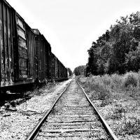 abandoned train, bradenton, fl, Онеко