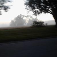 Foggy morning, Онеко