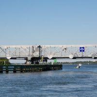 Casey Key Swing Bridge, Оспри