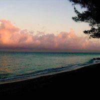 Dawn over the Gulf, North Casey Key, Оспри