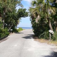 North Casey Key Road, Оспри