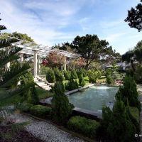 Sunken Garden, Оспри